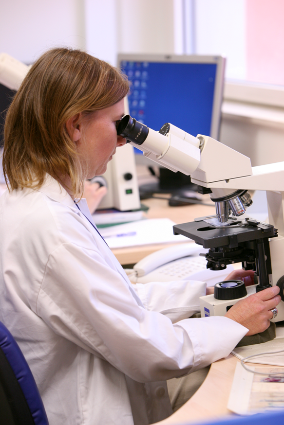 A physician conducting a pathogen analysis