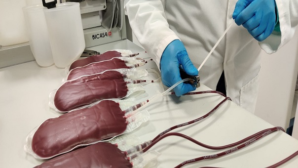 Blood bags preperation